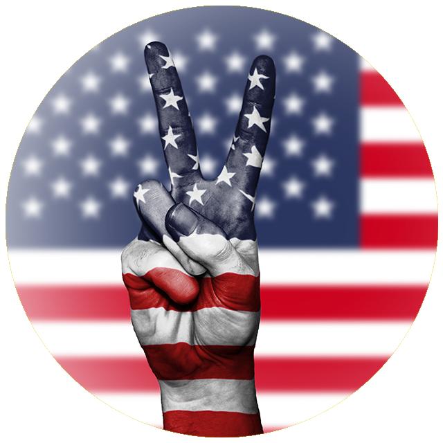Američki izbori